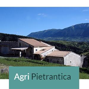 Partner Agri Pietrantica